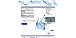 Culligan of Romeo